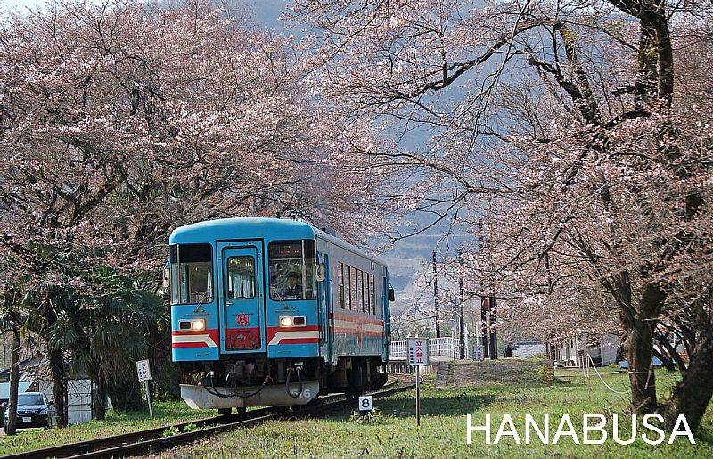 Hana0216_2