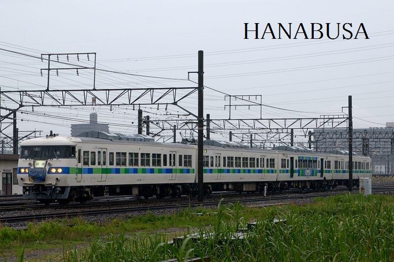 Hotaru_1