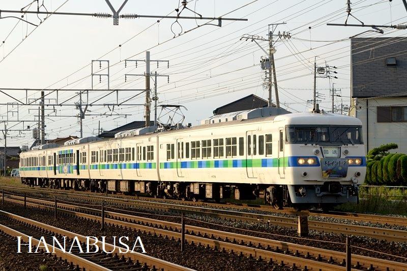 Hotaru_2