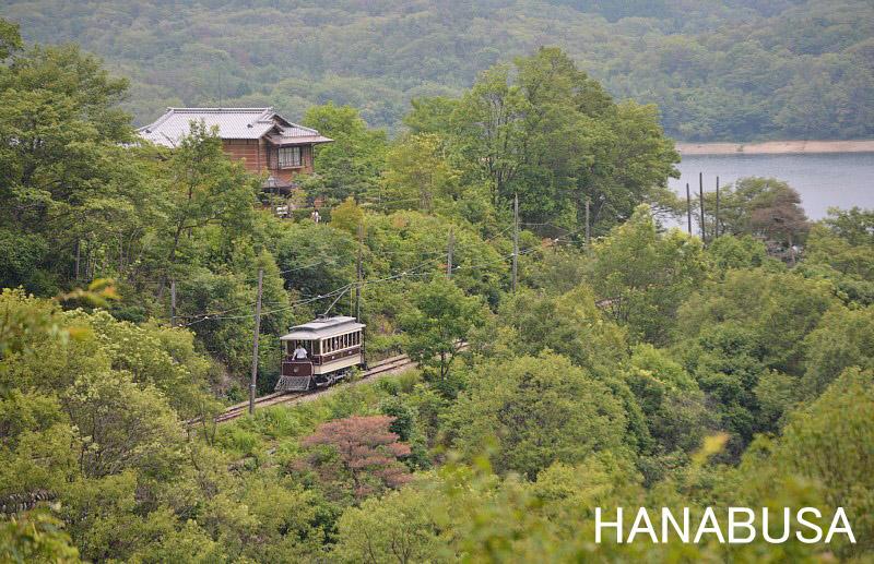 Hanadsc_0145