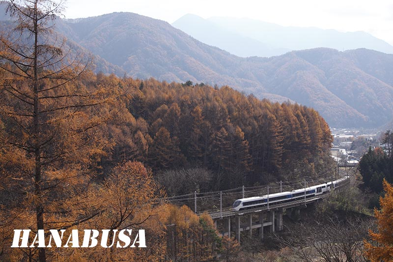 2014 秋のネタ列車追跡: 「はな ...