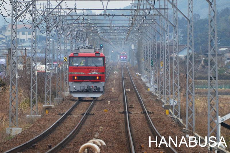 Hanah270217dsc_0542_2