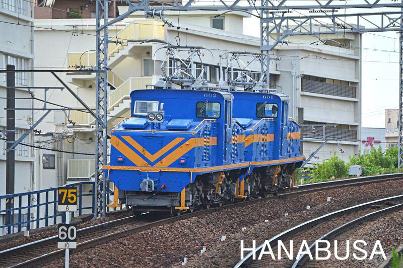 Hanash270720dsc_0113