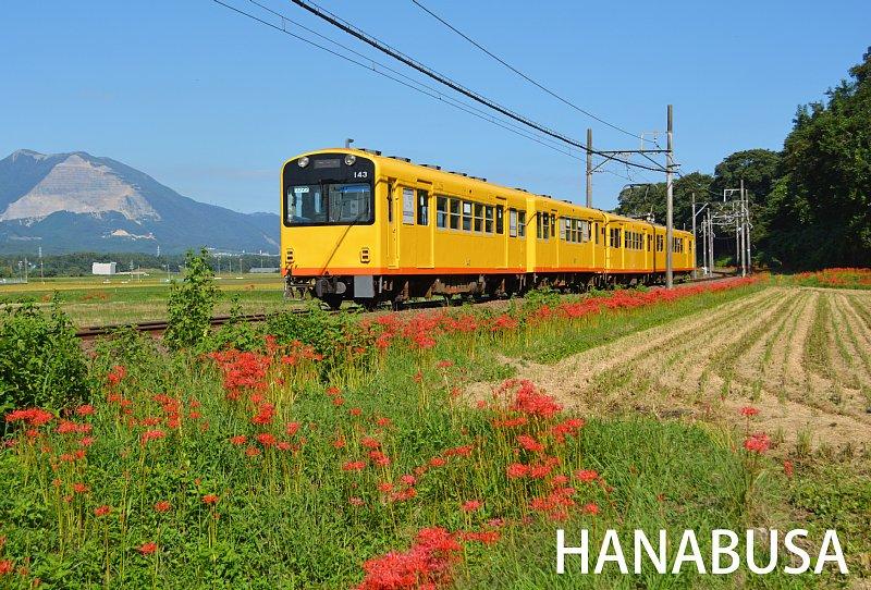 Hanah270920dsc_0267