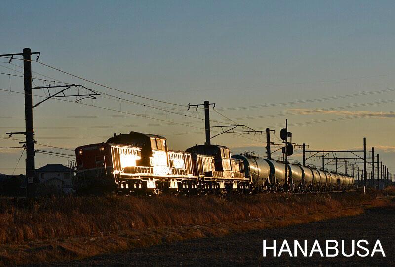 Hanash2811