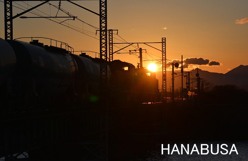 Hanash2813