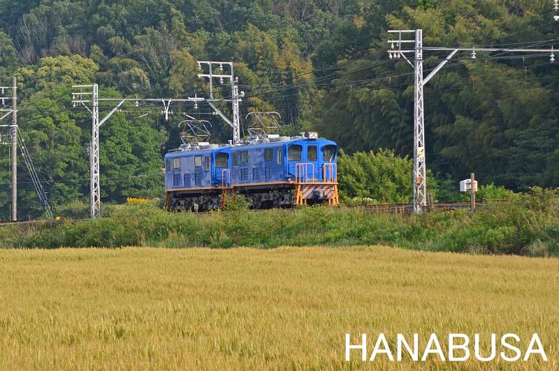 Hanah280515dsc_0387