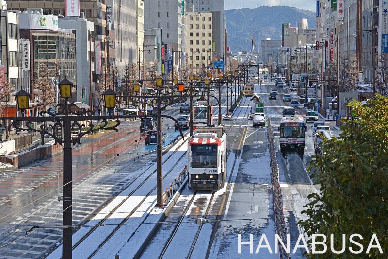 Hana290115dsc_1483