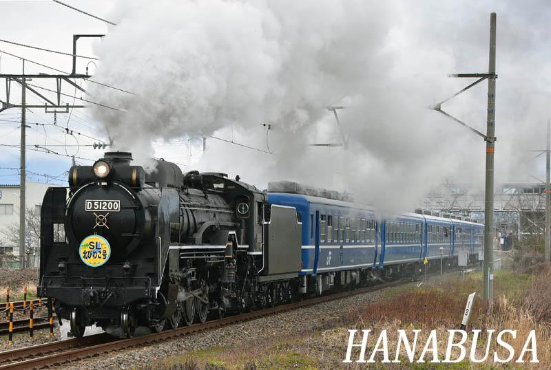 92412